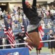 Tennis, Serena Williams trionfa negli US Open02