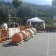 Zucca da 702 chili: il bresciano Sergio Moretti stabilisce nuovo record italiano4