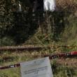 Elena Ceste morta: suo il cadavere nelle campagne di Asti6