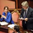 M5S, barricate in Senato e monetine sul governo. Voto a rischio slittamento10