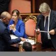M5S, barricate in Senato e monetine sul governo. Voto a rischio slittamento15