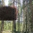Svezia, Tree Hotel: dormire nel nido di uccello, nel cono blu, nella cabina01