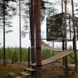 Svezia, Tree Hotel: dormire nel nido di uccello, nel cono blu, nella cabina5