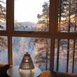 Svezia, Tree Hotel: dormire nel nido di uccello, nel cono blu, nella cabina03
