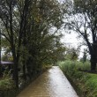 Maltempo, allerta meteo: pioggia forte a Genova01