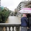 Alluvione Liguria: Chiavari sommersa, 2 dispersi09