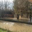 Il Po a Sazzara, Mantova