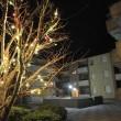 """Debora Calamai uccide figlio dopo cena di Natale: """"Sono contenta di averlo fatto"""" 2"""