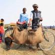 Nepal, il grande mattatoio: migliaia di animali macellati in onore di dea indu 01