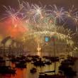 Capodanno a Sydney: 100mila fuochi d'artificio, 1 mln e 200mila in piazza FOTO8