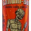 Gandhi-bot, lattine di birra con la foto di Gandhi fanno infuriare Usa e India 2