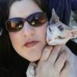 Florida, gatta sopravvive a freccia in testa FOTO. Polizia cerca i responsabili