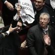 Lega Nord, cartelli Camera contro Corte Costituzionale11