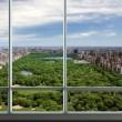 New York, attico da 100 mln di dollari. Appartamento più caro al mondo FOTO 4