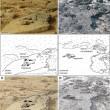 Le immagini dei rover: forse inquadrano fossili su Marte 4