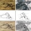 Le immagini dei rover: forse inquadrano fossili su Marte 5
