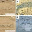 Le immagini dei rover: forse inquadrano fossili su Marte 8