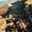 Trapani, ruspa distrugge scogliera San Vito Lo Capo