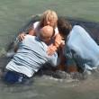 Nuova Zelanda, auto finisce in acqua: due agenti rompono il lunotto e la salvano03