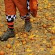 Carnevale Ivrea, la battaglie delle arance13