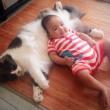 Gatti babysitter che accudiscono e fanno compagnia ai bimbi 10