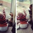 Gatti babysitter che accudiscono e fanno compagnia ai bimbi 8