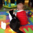 Gatti babysitter che accudiscono e fanno compagnia ai bimbi 06