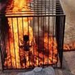 Isis, altro video orrore: pilota giordano bruciato vivo in una gabbia 04