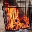 Isis, altro video orrore: pilota giordano bruciato vivo in una gabbia 03