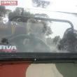 "Australia, koala vuole ""rubare"" auto in sosta14"