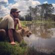 Sydney, guardiano parco naturale insegna a cucciolo di leone a nuotare04