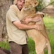 Sydney, guardiano parco naturale insegna a cucciolo di leone a nuotare06