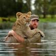 Sydney, guardiano parco naturale insegna a cucciolo di leone a nuotare