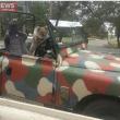 "Australia, koala vuole ""rubare"" auto in sosta15"