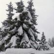 Meteo, Big snow arriva sull'Italia il 5 febbraio: neve, pioggia e freddo 4