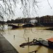 Ponte Umberto, Roma: uomo si butta nel Tevere, sommozzatori alla ricerca del corpo 5