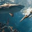 Rihanna nuota tra gli squali per Harper's Bazaar04