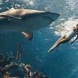 Rihanna nuota tra gli squali per Harper's Bazaar02