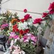 Copenaghen, fiori sul luogo dove è stato ucciso il terrorista