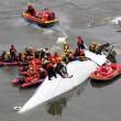 VIDEO YouTube Taiwan, aereo TransAsia cade nel fiume dopo decollo 6