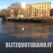 Roma, Tevere in piena: dopo le forti piogge livello del fiume a 11 metri FOTO