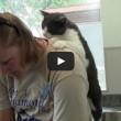 Il gatto che massaggia la schiena alla sua padrona (1)