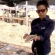 VIDEO YouTube: Tel Aviv, scoperte ceramiche antiche utilizzate per produrre birra3