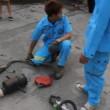 VIDEO YouTube: cane intrappolato nel tubo d'acciaio, 40 minuti per liberarlo03