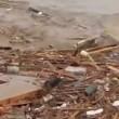VIDEO YouTube: Cile, cane tra i detriti dell'alluvione si salva per miracolo3