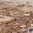VIDEO YouTube: Cile, cane tra i detriti dell'alluvione si salva per miracolo4