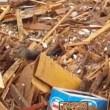 VIDEO YouTube: Cile, cane tra i detriti dell'alluvione si salva per miracolo5