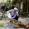 VIDEO YouTube - Fukushima, Naoto Matsumura, guardiano degli animali abbandonati 5