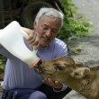 VIDEO YouTube - Fukushima, Naoto Matsumura, guardiano degli animali abbandonati 7