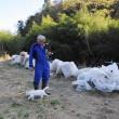 VIDEO YouTube - Fukushima, Naoto Matsumura, guardiano degli animali abbandonati 9